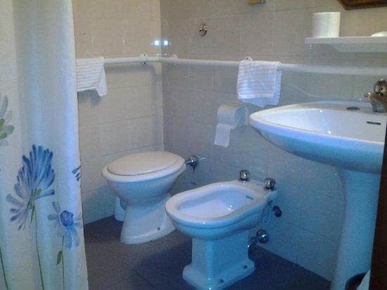 Puzza di fogna nel bagno - Foto di Hotel Altavilla, Roma - TripAdvisor