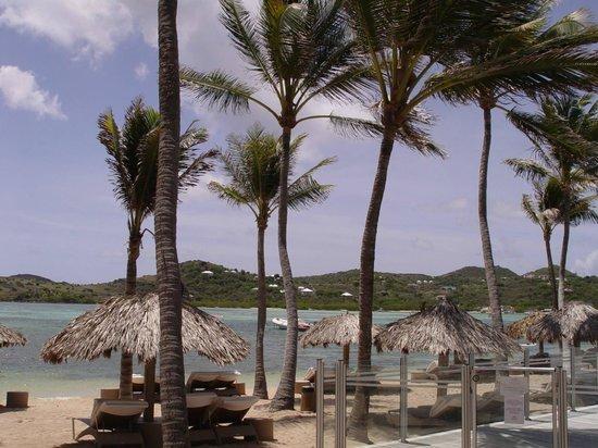 Le Guanahani : Beach facing the lagoon