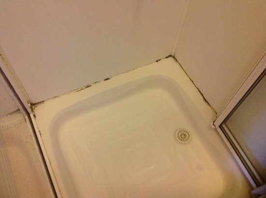 The Castle Hotel: The shower tray needs a good clean, our request for one was ignored. Mould is not appreciated.