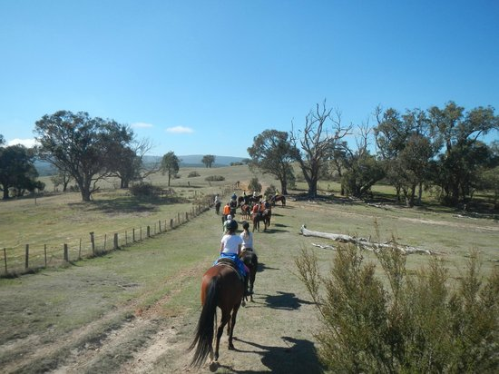 Uncle Nev's Trail Rides: Departing the homestead