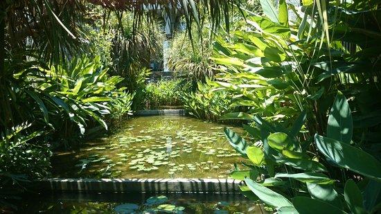 Sareeraya Villas & Suites: Some pleasant landscaping