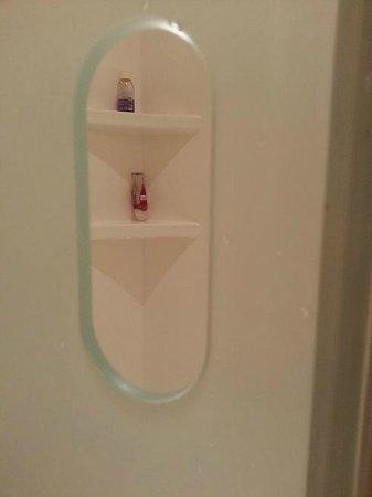Ibis budget Malaga Centro: Håndtaket til dusjdøren