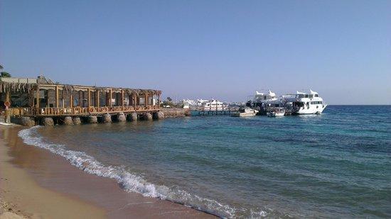 Caribbean Bar : Direkt am Strand mit tollem Ausblick aufs Meer