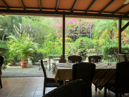 Villa del Sueno : View from the breakfast and dinner terrace into the garden 