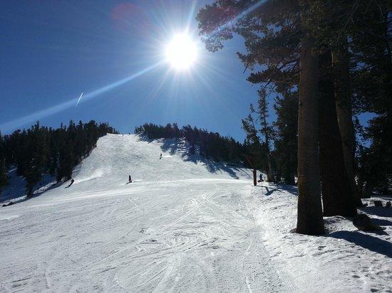 Bluelake Inn at Tahoe: slopes