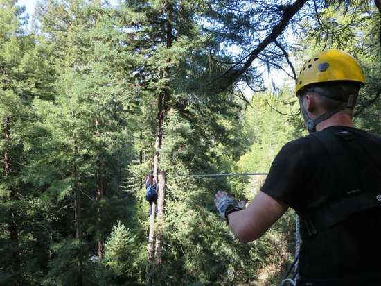 Sonoma Canopy Tours: Rush