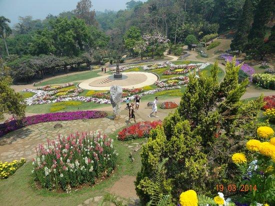 Mai Siam Resort: jardin botanic
