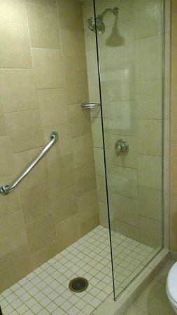 Hilton Minneapolis/Bloomington: Glass shower in Executive Room