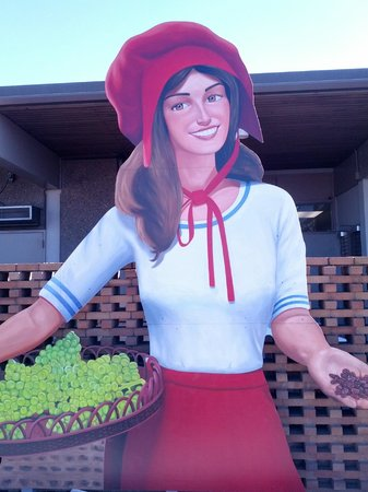 Sun-Maid Store The Sunmaid Girl is waiting for you!  sc 1 st  TripAdvisor & The Largest Raisin Box on earth - Picture of Sun-Maid Store ...