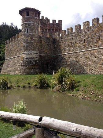 Castello di Amorosa : amazing!!!