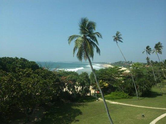Vivanta by Taj - Bentota: Bentota beach