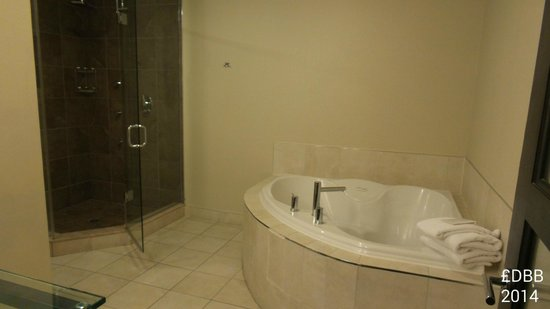 Sterling Inn & Spa : jacuzzi & shower room 119