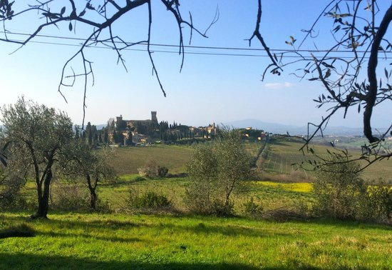 Tuscany Bike Tours : Castle in Tuscany