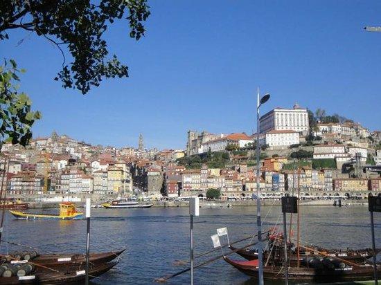 Rio Douro: Douro do lado das Vinículas