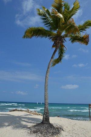 Grand Bahia Principe Tulum : на пляже