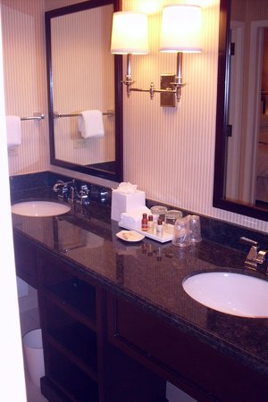 Sheraton Suites Plantation, Ft Lauderdale West: Granite counters, two sinks