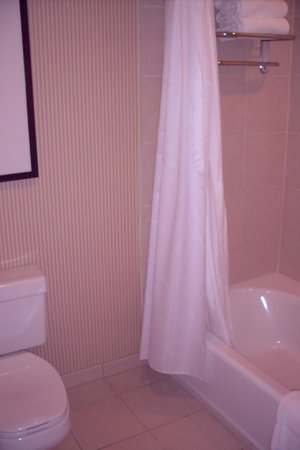 Sheraton Suites Plantation, Ft Lauderdale West: Tiled wall bath