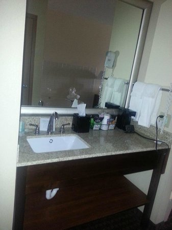 Comfort Inn & Suites Riverview: Room