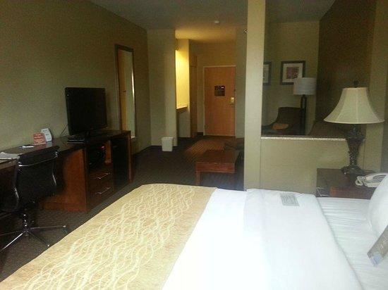 Comfort Inn & Suites Riverview : King Suite
