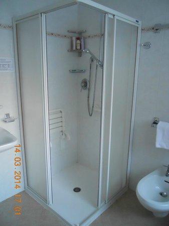 Hotel Casa Alpina : bagno 1