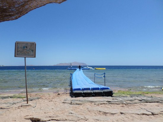 Sierra Sharm El Sheikh : Beach