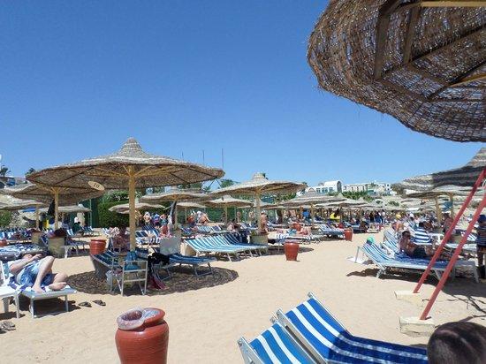 Sierra Sharm El Sheikh : The Beach