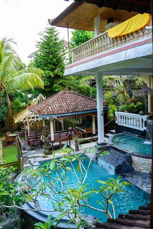 B&B Home Stay Griya Jungutan: Pool