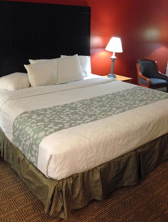 La Quinta Inn Tampa Near Busch Gardens: bed 2