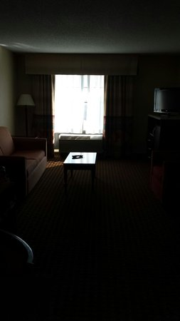 Holiday Inn Hotel & Suites Owatonna: King suite room 2