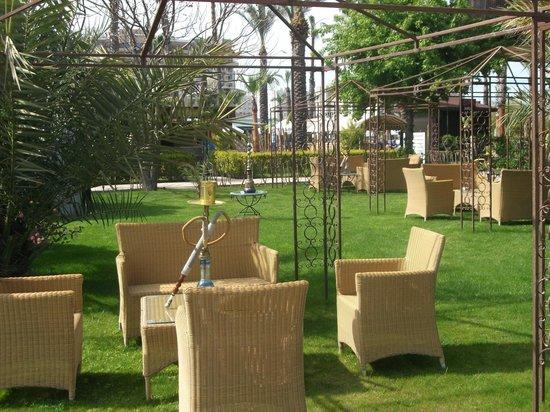 Concorde De Luxe Resort: bong garden in the hotel grounds