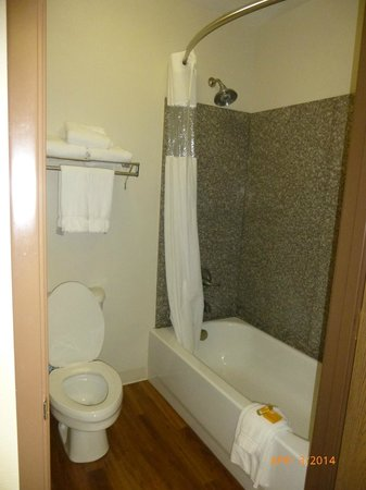 La Quinta Inn & Suites Salem: Rain shower head in bathroom