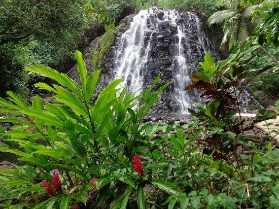Kepirohi Waterfall : Waterfall