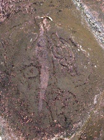 Pohnpaid Petroglyphs: Petroglyph