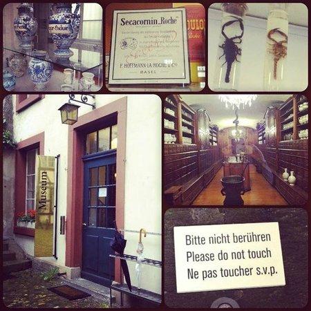 Pharmazie-Historisches Museum: Коллаж. Вход в музей, экспонаты, а также единственная табличка, продублированная на английский я