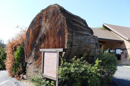 Yosemite Gateway Restaurant: Entrance to the Restaurant