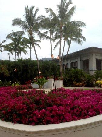 Fairmont Orchid, Hawaii: отель