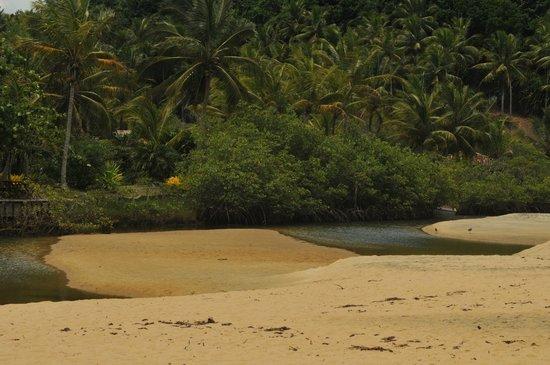 Hotel Fazenda Cala & Divino: Braço de rio