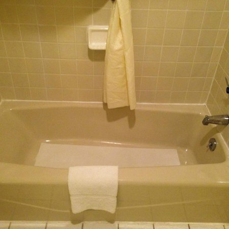 Comfort Inn: bath