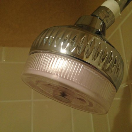 Comfort Inn: shower head