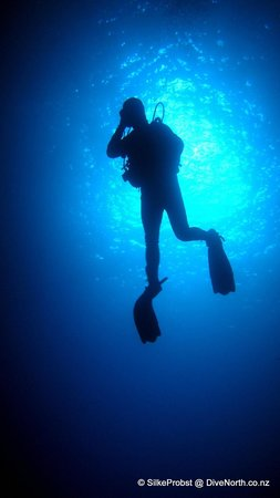 Dive North: Blue water at Cathedral Cave