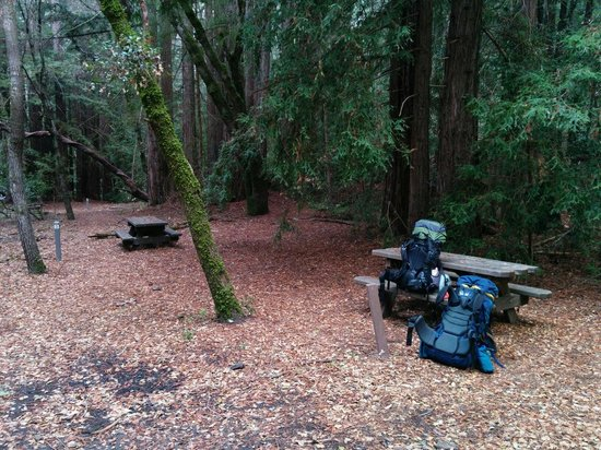 Forest of Nisene Marks State Park: Camp