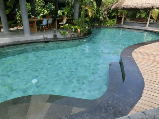 The Green Room Canggu: Allgemeiner Pool