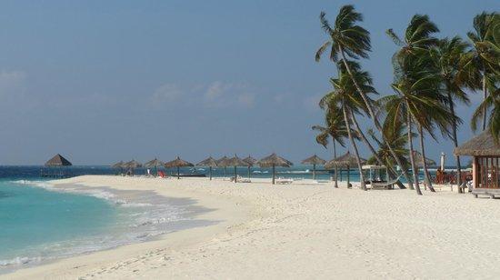 Veligandu Island Resort & Spa : Sand bank
