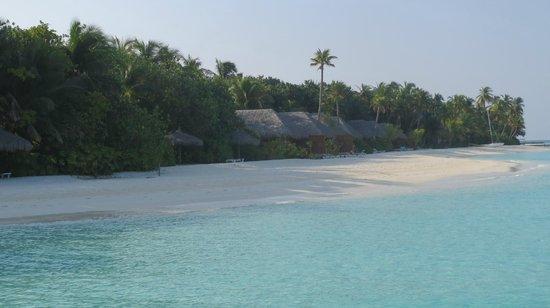 Veligandu Island Resort & Spa : West side beach