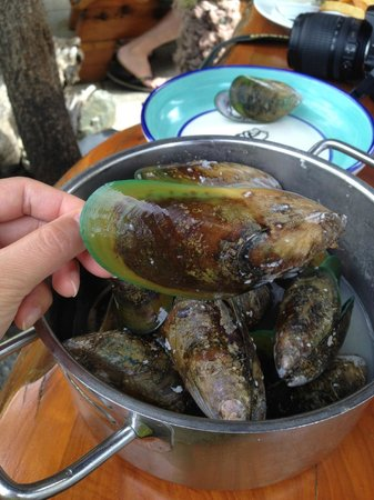 The Mussel Pot: The giant Mussell