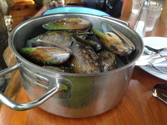 The Mussel Pot: Mussel Pot