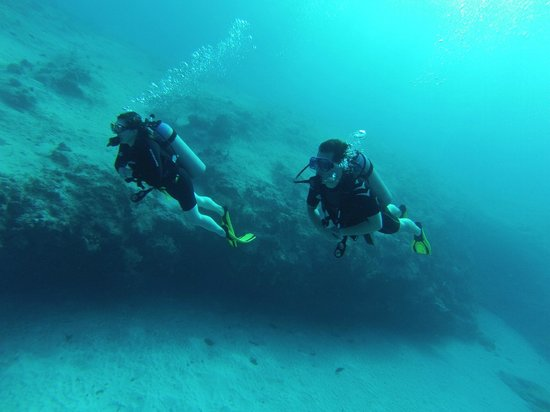 Cayman Diveshuttle Ltd: After the skills, a tour of the mini wall