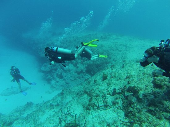 Cayman Diveshuttle Ltd: Wife and kids foreground; Esther down in the hole