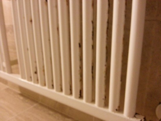 Hotel Giolli Nazionale: radiateur salle de bain