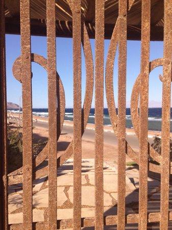 Dahab Paradise : Beach view